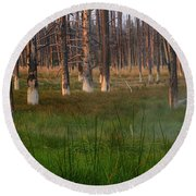 Round Beach Towel featuring the photograph Yellowstone Mysterious Morning by Teresa Zieba
