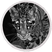 Yim - The Clouded Leopard Round Beach Towel
