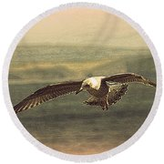 Round Beach Towel featuring the photograph Young Gull by Linsey Williams