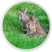 Young Rabbits Round Beach Towel by Nick  Biemans