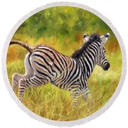 Young Zebra Round Beach Towel by David Stribbling