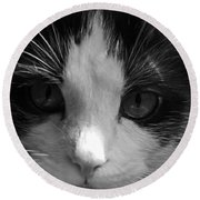 Yue Up Close Round Beach Towel