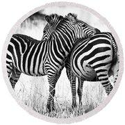 Zebra Love Round Beach Towel by Adam Romanowicz