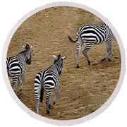 Round Beach Towel featuring the photograph Zebra Tails by AJ  Schibig