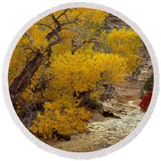 Zion National Park Autumn Round Beach Towel