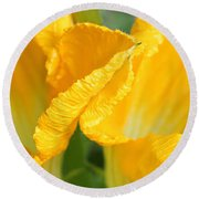 Zucchini Flowers In May Round Beach Towel