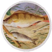 An Angler's Catch Of Coarse Fish Round Beach Towel
