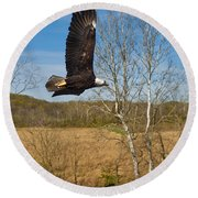 Round Beach Towel featuring the photograph  Eagle Circleing Her Nest by Randall Branham