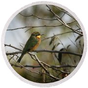 African Bee Eater Round Beach Towel