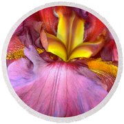 Burgundy Iris Round Beach Towel