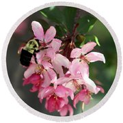 Round Beach Towel featuring the photograph Buzzing Beauty by Elizabeth Winter