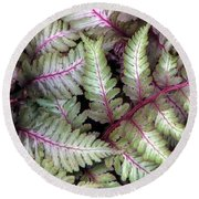 Japanese Painted Fern Round Beach Towel