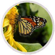 Monarch And The Sunflower Round Beach Towel