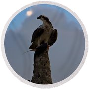 Osprey With Catch Round Beach Towel