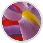 Photograph Of A Dutch Iris Round Beach Towel