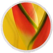 Photograph Of A Lobster Claws Heliconia Round Beach Towel