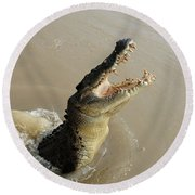 Salt Water Crocodile 2 Round Beach Towel by Bob Christopher