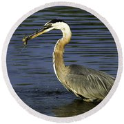 Round Beach Towel featuring the photograph 2 For 1 Dinner Special by Clayton Bruster