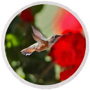 Hummingbird 3 Round Beach Towel
