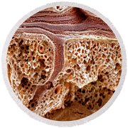 Mouse Lung, Sem Round Beach Towel