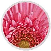 Gerbera Flower Round Beach Towel by Elena Elisseeva