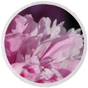 Peony Named Shirley Temple Round Beach Towel by J McCombie