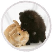 Rabbit And Pup Round Beach Towel