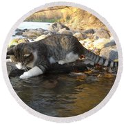 A Cat Goes Fishing Round Beach Towel by Kent Lorentzen