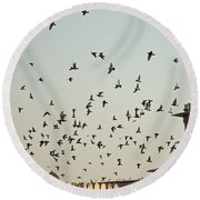 Round Beach Towel featuring the photograph A Flock Of Pigeons Crowding One Of The Structures On Top Of The Red Fort by Ashish Agarwal