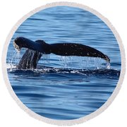 A Whale Of A Time Round Beach Towel