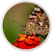 A Wing Of Beauty Round Beach Towel