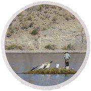Agua Verde Fisherman  Round Beach Towel by Anne Mott
