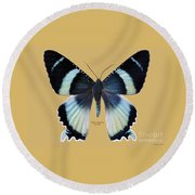 Alcides Agathyus Butterfly Round Beach Towel