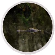 Round Beach Towel featuring the photograph Alligator In Swamp by Dan Friend
