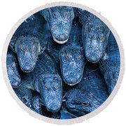 Alligators Round Beach Towel by Gary Meszaros and Photo Researchers