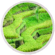 Round Beach Towel featuring the photograph Amazing Rice Terrace Field by Luciano Mortula