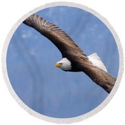 Round Beach Towel featuring the photograph American Bald Eagle by Doug Lloyd