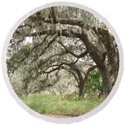 Arching Oaks Round Beach Towel