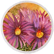 Arizona Pincushion  Round Beach Towel by Eric Samuelson