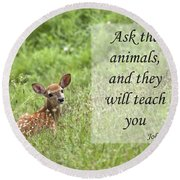 Ask The Animals Round Beach Towel by Jeannette Hunt