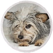Attitude Round Beach Towel by Jeannette Hunt