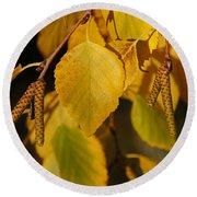 Autumn Birch In Southern Oregon Round Beach Towel by Mick Anderson