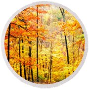 Round Beach Towel featuring the photograph Autumn Forest by Randall Branham