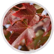 Autumn In My Back Yard Round Beach Towel by Mick Anderson