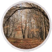 Round Beach Towel featuring the photograph Autumn In The Woods by Penny Meyers