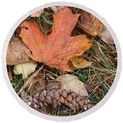 Round Beach Towel featuring the photograph Autumn Leaves by Donna  Smith
