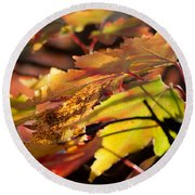 Autumn Morning Round Beach Towel