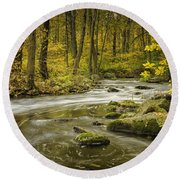 Babbling Brook Round Beach Towel by Fran Gallogly