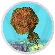 Bacteriophage P22 Round Beach Towel