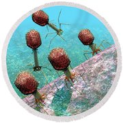 Bacteriophage T4 Virus Group 1 Round Beach Towel by Russell Kightley